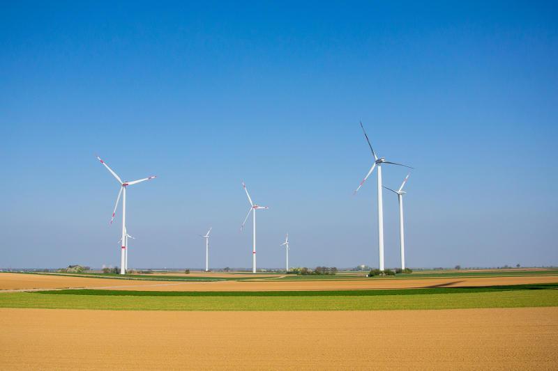 sostenibilidad y promoción