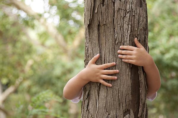 Las opiniones sobre Ecoembes y su labor por la naturaleza